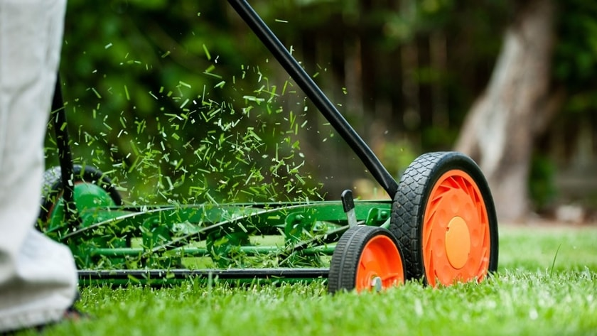 why-hire-a-lawn-service-to-mow-your-yard