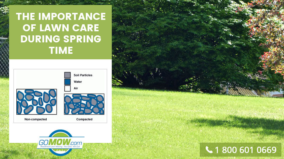 the-importance-of-lawn-care-during-spring-time