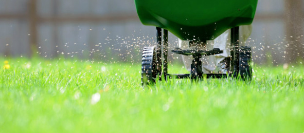 proper fertilization dallas plano garland lawn care company
