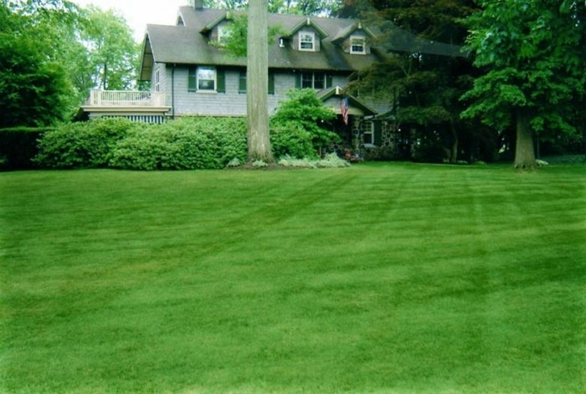 gomow-has-a-proven-record-as-a-reliable-lawn-service