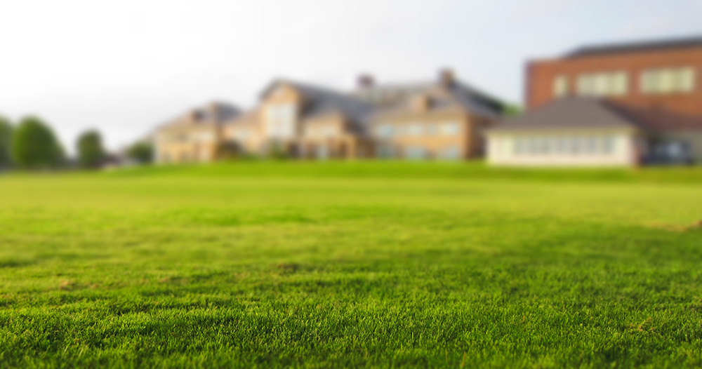 dallas-lawn-care-service-explains-the-importance-of-mowing-weekly