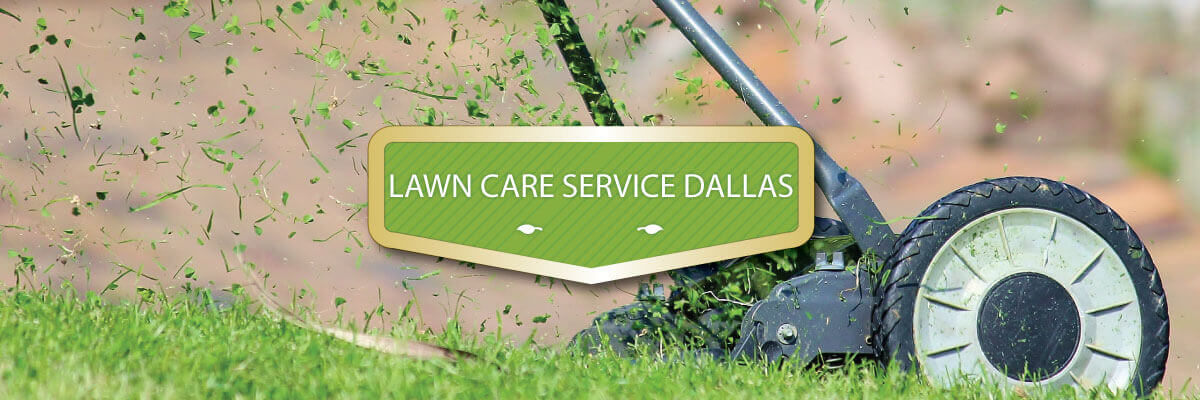 dallas-lawn-care-services