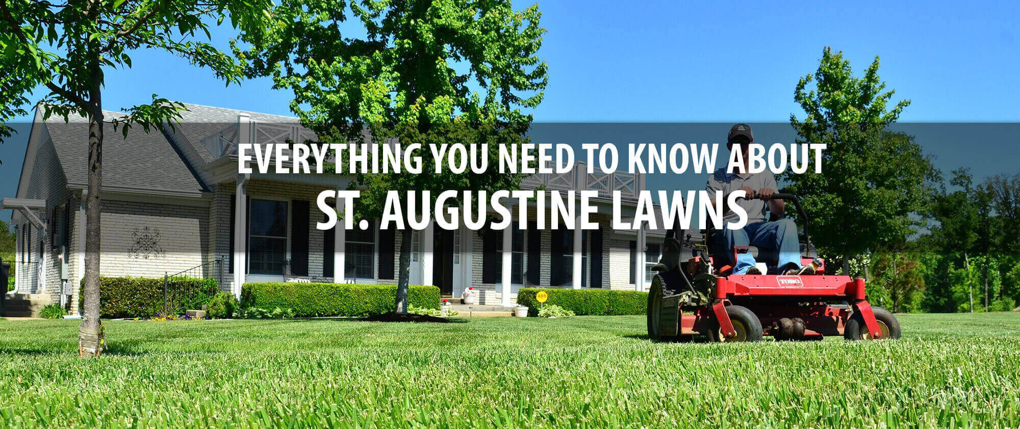 st-augustine-lawn-care