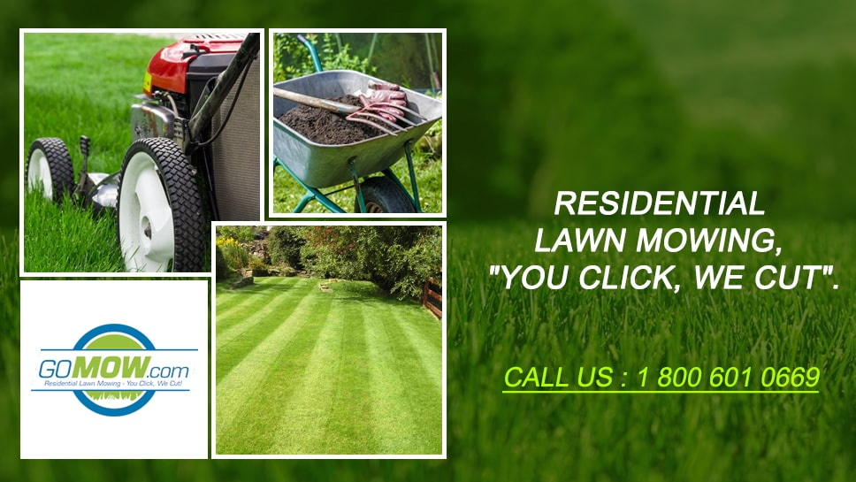 reasons-for-choosing-gomow-for-maintaining-your-residential-lawn