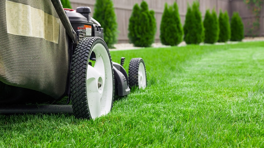 why-to-take-more-stress-about-your-lawn-lets-move-ahead-with-lawn-mowing-services