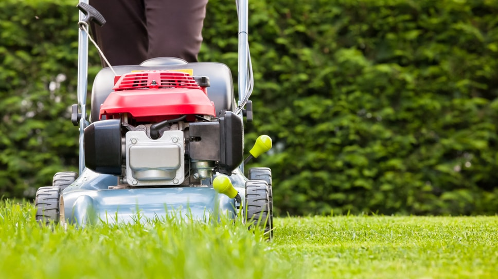 tips-to-keep-in-mind-before-buying-a-lawn-mower