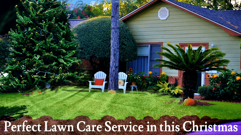 lets-have-a-perfect-lawn-care-service-in-this-christmas
