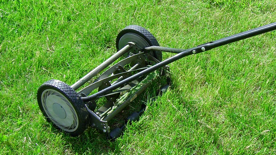 reduce-your-work-by-following-few-basic-steps-for-grass-cutting