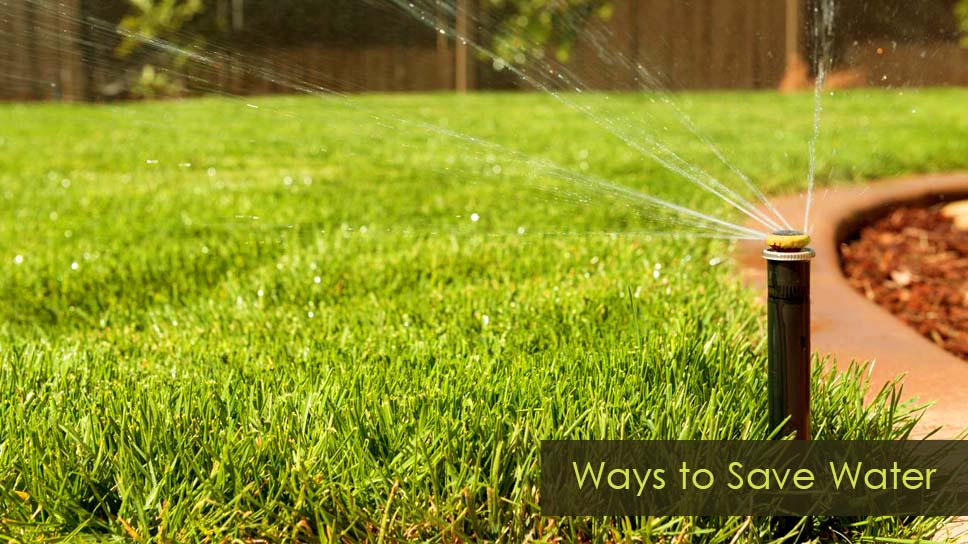 what-are-the-best-ways-to-save-water-when-maintaining-a-lawn