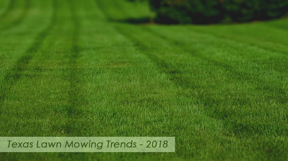 texas-lawn-mowing-services-trends-for-2018
