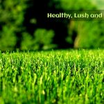 lawn-mowing-key-to-having-a-healthy-lush-and-green-lawn