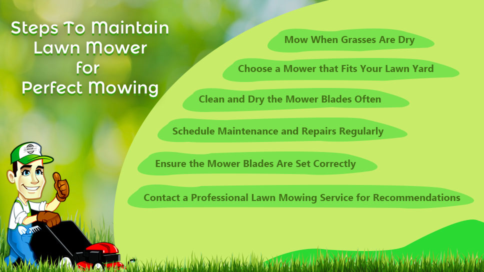 how-to-maintain-lawn-mower-for-perfect-lawn-mowing