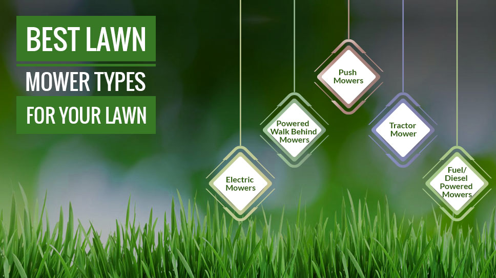 best-lawn-mower-types-for-your-lawn-yard