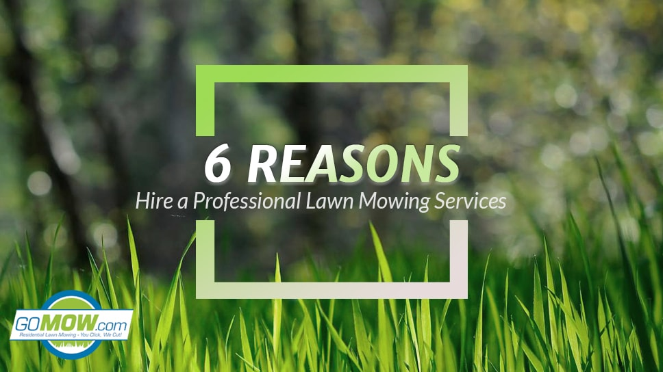 6-reasons-to-hire-a-professional-lawn-mowing-services-gomow