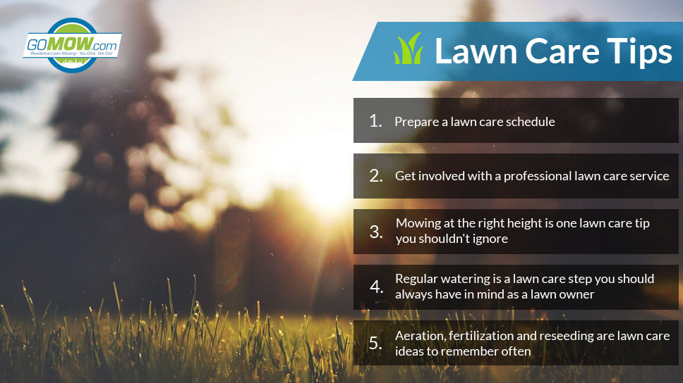 lawn-care-tips-from-gomow
