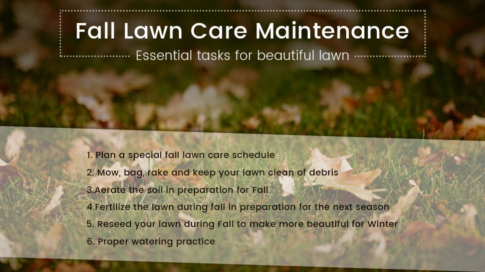fall-lawn-care-maintenance-special-tasks-that-are-essential-for-beautiful-lawn