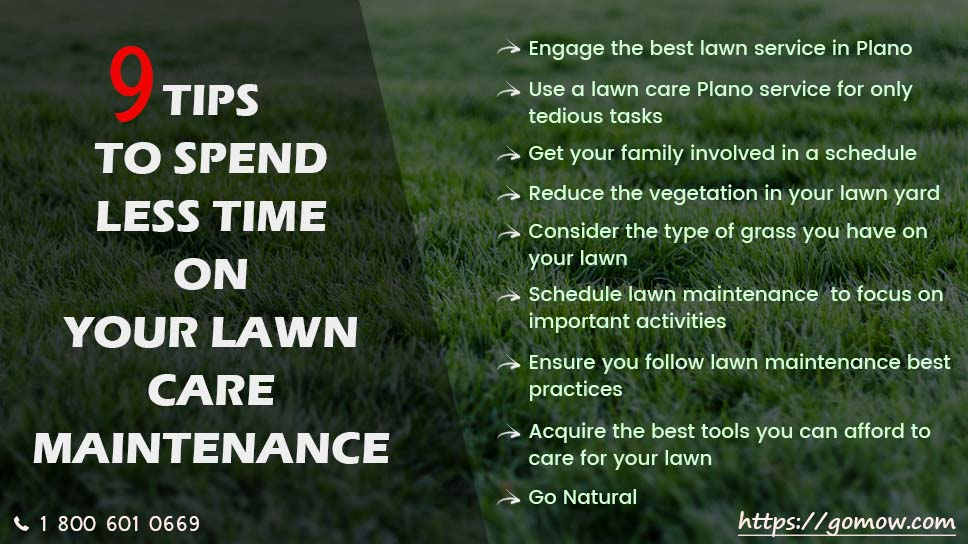 9-tips-to-spend-less-time-on-your-lawn-care-maintenance-in-plano