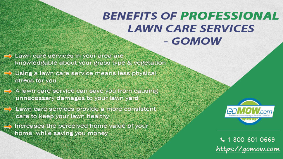 5-benefits-of-professional-lawn-care-services-gomow