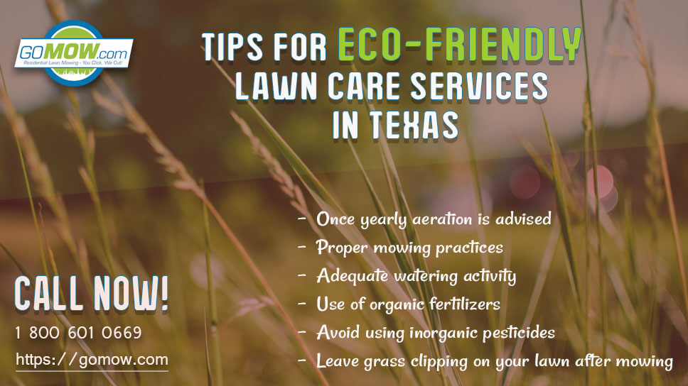 tips-for-eco-friendly-lawn-care-services-in-texas