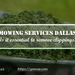 mowing-services-dallas-is-it-essential-to-remove-clippings