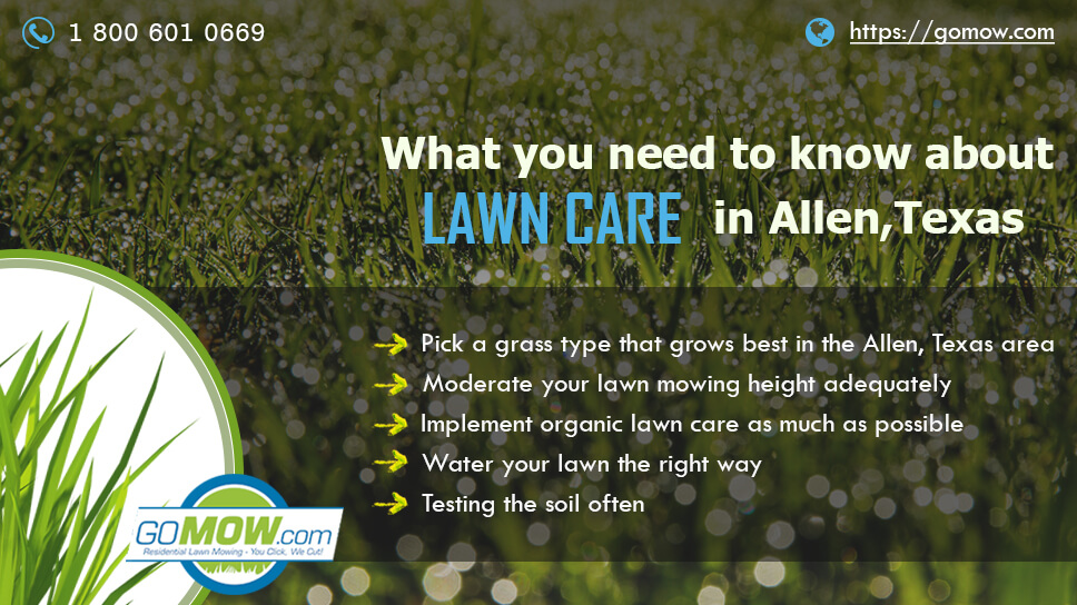 what-you-need-to-know-about-lawn-care-in-allen-texas