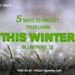 5-ways-to-protect-your-lawn-this-winter-in-lakeway-tx