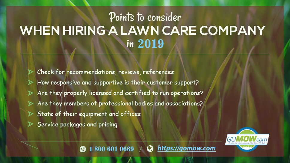 6 Points To Consider When Hiring A Lawn Care Company In