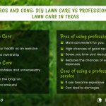 pros-and-cons-diy-lawn-care-vs-professional-lawn-care-in-texas