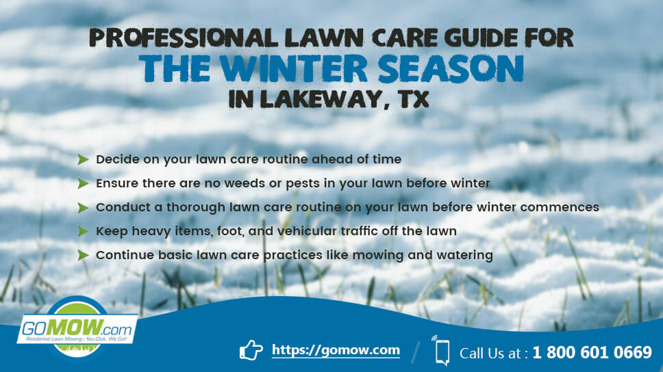 professional-lawn-care-guide-for-the-winter-season-in-lakeway-tx