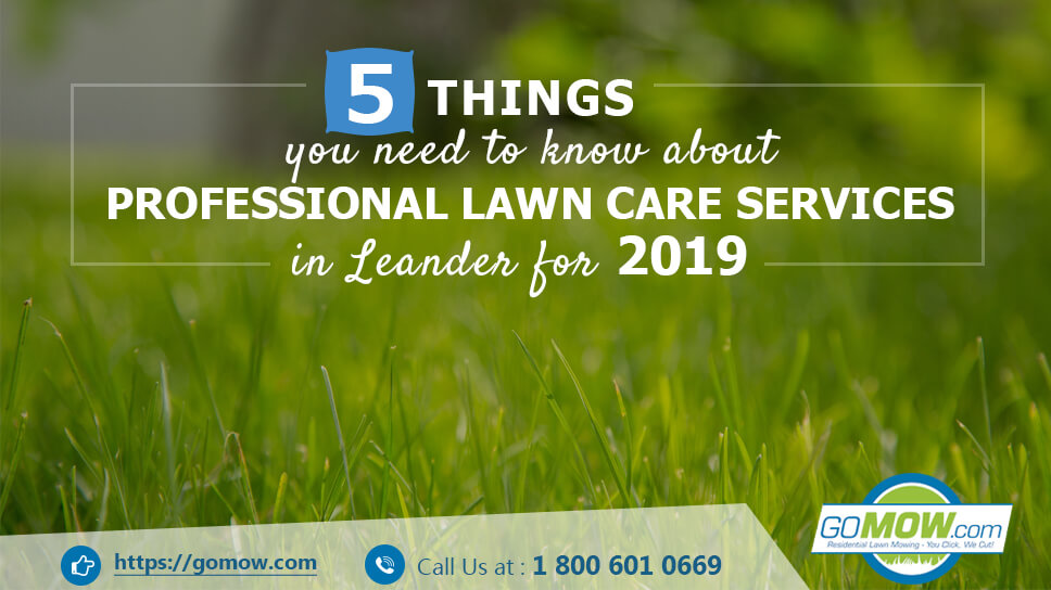 5-things-you-need-to-know-about-professional-lawn-care-services-in-leander-for-2019