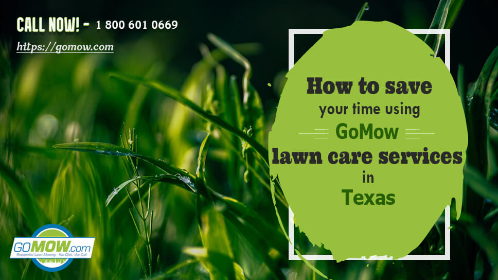 how-to-save-your-time-using-gomow-lawn-care-services-in-texas