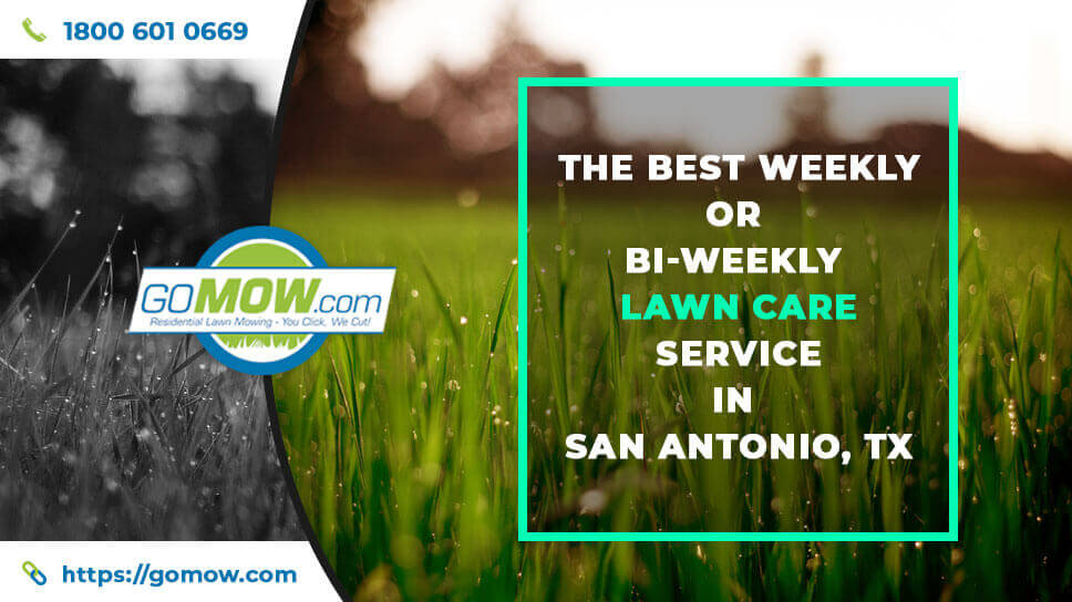the-best-weekly-or-bi-weekly-lawn-care-service-in-san-antonio-tx