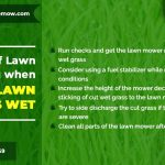 tips-of-lawn-mowing-when-the-lawn-grass-is-wet