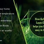 how-gomow-lawn-care-helps-you-breathe-easy-in-austin