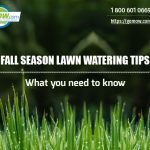 fall-season-lawn-watering-tips-what-you-need-to-know