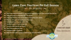 lawn-care-practices-for-fall-season-in-austin