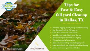tips-for-fast-and-easy-fall-yard-cleanup-in-dallas-tx