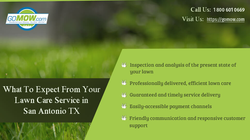 what-to-expect-from-your-lawn-care-service-in-san-antonio-tx