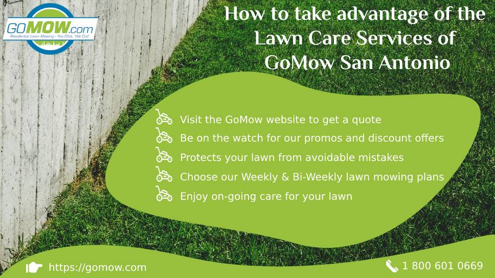 how-to-take-advantage-of-the-lawn-care-services-of-gomow-san-antonio