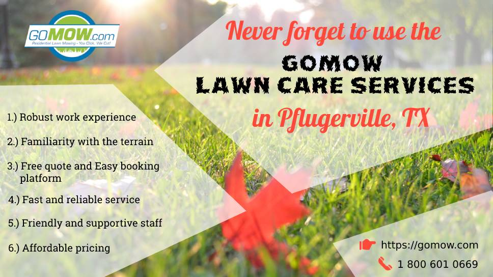 never-forget-to-use-the-gomow-lawn-care-services-in-pflugerville-tx-for-2020