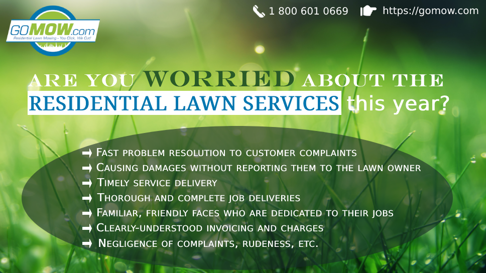 are-you-worried-about-the-residential-lawn-services-this-year