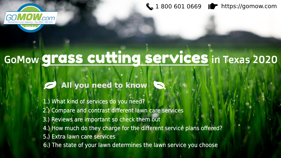 gomow-grass-cutting-services-in-texas-2020-all-you-need-to-know