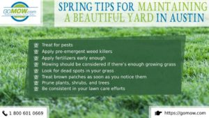spring-tips-for-maintaining-a-beautiful-yard-in-austin