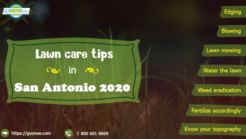 lawn-care-tips-in-san-antonio-2020-lawn-mowing-blowing-edging-weed-eating