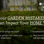 four-garden-mistakes-that-can-impact-your-home-value
