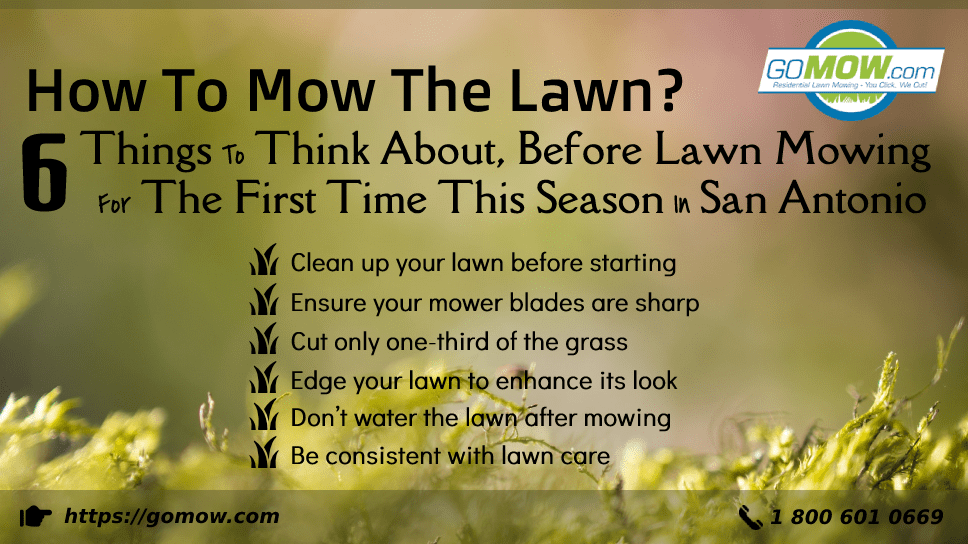 how-to-mow-the-lawn-6-things-to-think-about-before-lawn-mowing-for-the-first-time-this-season-in-san-antonio