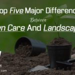 top-five-major-difference-between-lawn-care-and-landscaping