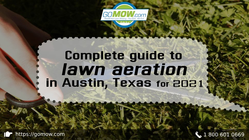 complete-guide-to-lawn-aeration-in-austin-texas-for-2021