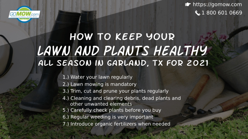 how-to-keep-your-lawn-and-plants-healthy-all-season-in-garland-tx-for-2021