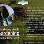 nine-reasons-why-you-should-love-gardening-in-austin-tx-for-2021